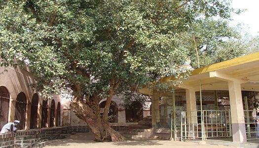 श्री क्षेत्र औदुंबर:Shri Kshetra Audumbar